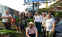 Núcleo de Sustentabilidade promove evento para a primeira colheita na horta comunitária