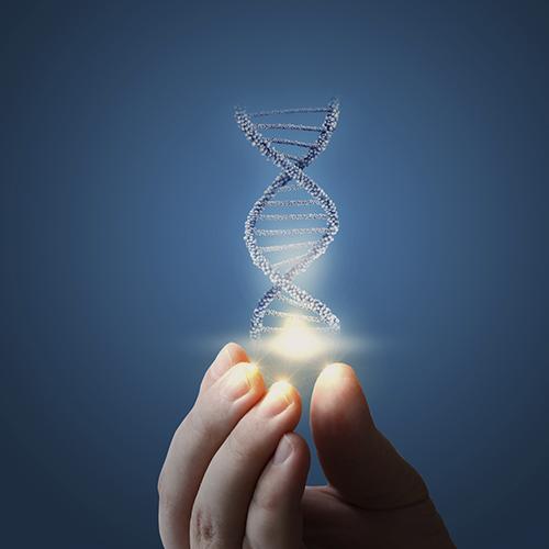 Desvendando a Biotecnologia