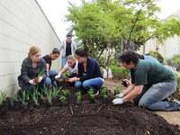 Curso de Gastronomia contará com um jardim de ervas