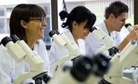 Aprendizado prático, com laboratórios multidisciplinares.
